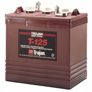 Trojan Deep Cycle Accu T125 240Ah 6V APW